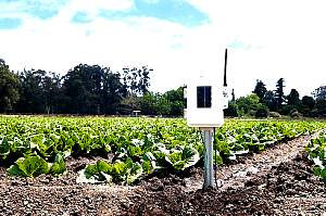 Davis Weather Stations Wireless Leaf, Soil M/T Station