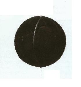 Day Mark Signals Ball Shape